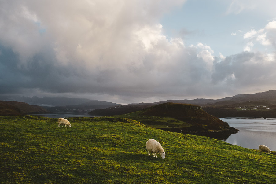 Scotland-69