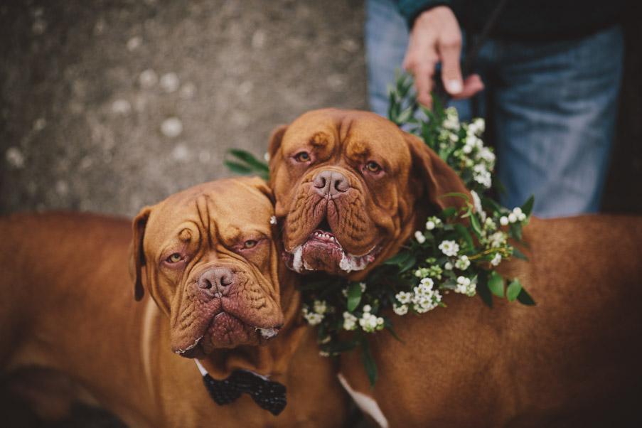 aoibhin_garrihy_and_john_burke_wedding-93