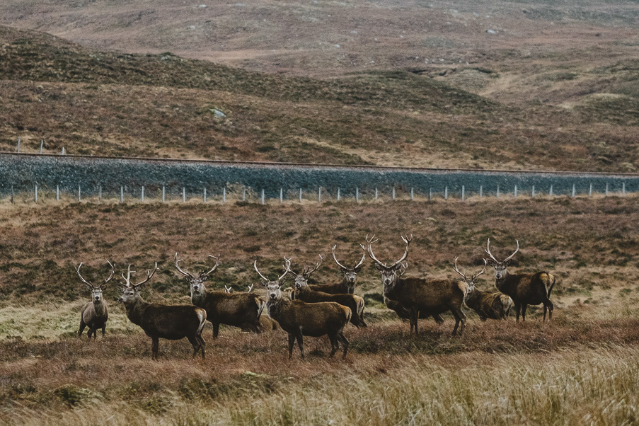 scotland_adventure_photography_isle_of_skye-81