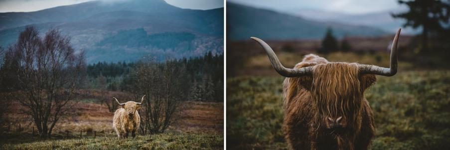 scotland_adventure_photography_isle_of_skye-88b