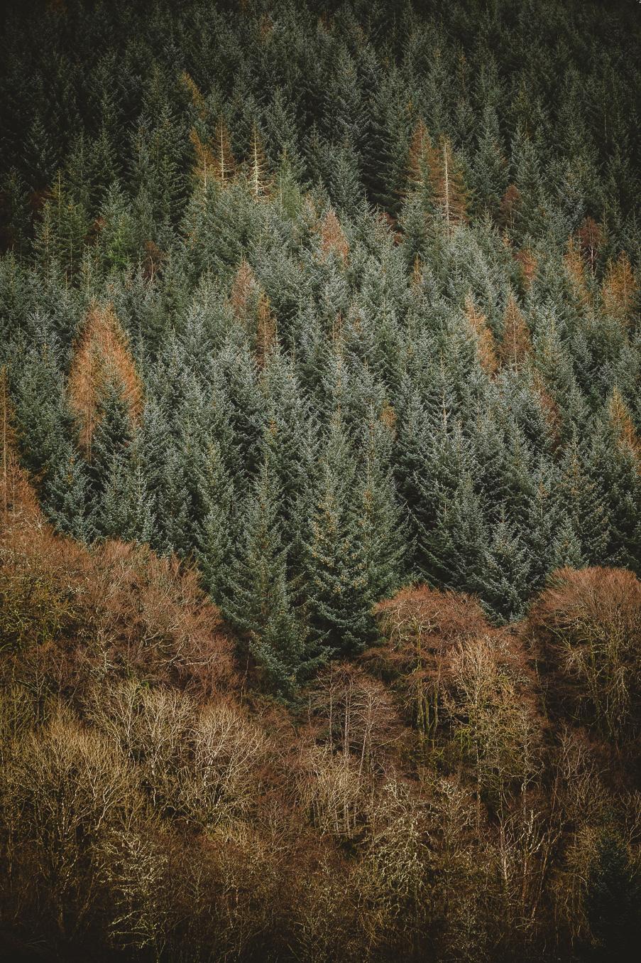 scotland_adventure_photography_isle_of_skye-96